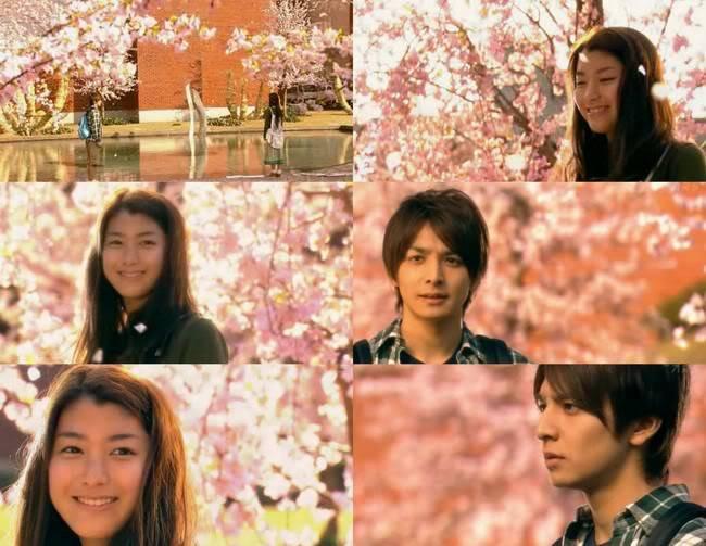 Muốn biết bốn mùa Nhật Bản đẹp thế nào, đây là 9 phim mà bạn không thể bỏ qua! - Ảnh 1.