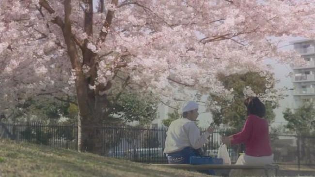 Muốn biết bốn mùa Nhật Bản đẹp thế nào, đây là 9 phim mà bạn không thể bỏ qua! - Ảnh 3.