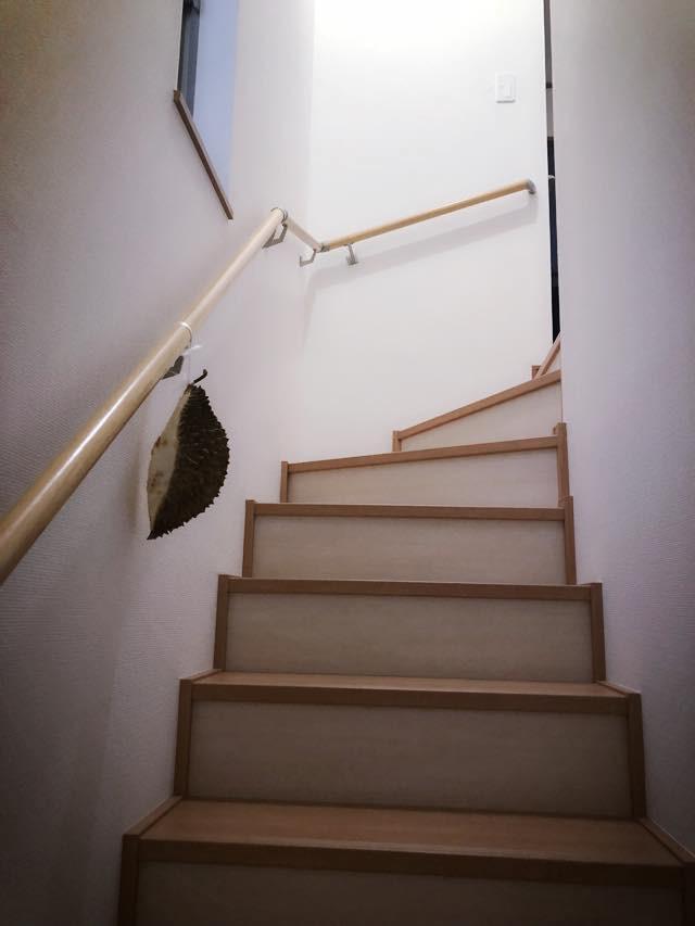 Giận chồng, vợ treo sầu riêng khắp nhà để đánh bom khứu giác trả thù - Ảnh 4.