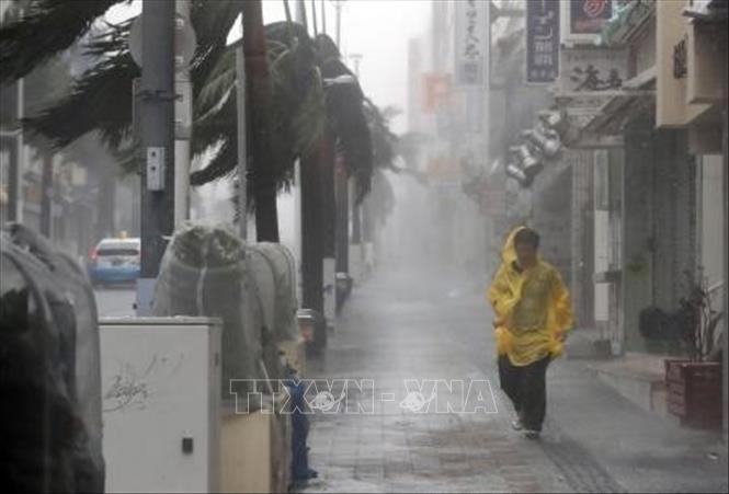Bão Trami càn quét, nhiều tỉnh ở Nhật Bản ngừng mọi dịch vụ đường sắt, hàng không - Ảnh 1.