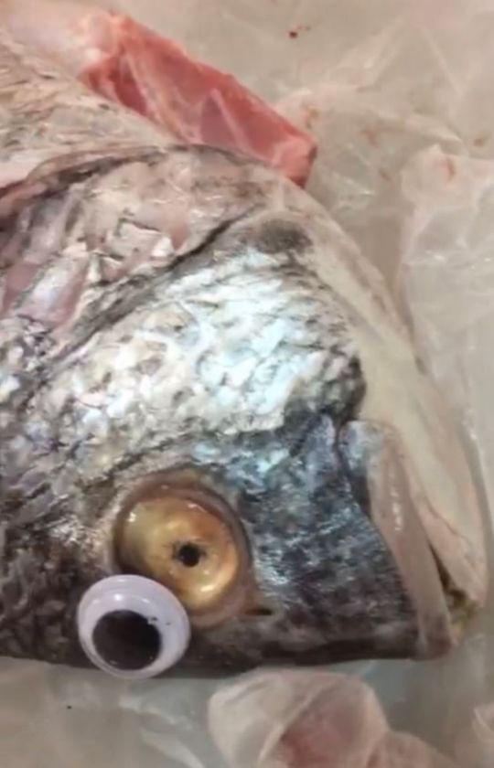 Gian thương ở Kuwait lợi dụng đôi mắt hoạt hình nhảm nhí để làm giả cá tươi - Ảnh 2.