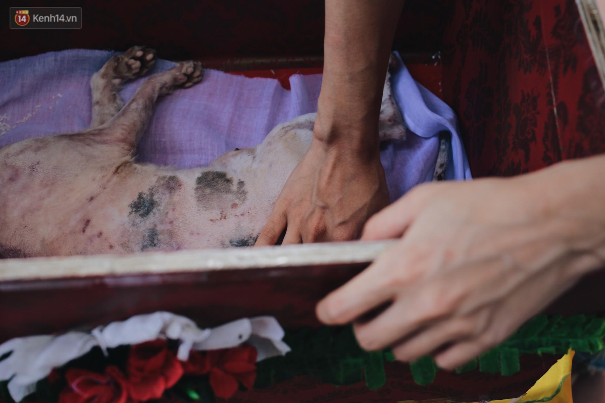 Gặp người đàn ông xây resort chó mèo kỳ lạ nhất Hà Nội: Tổ chức đám tang và thờ cúng cho hàng trăm mộ phần thú cưng xấu số - Ảnh 9.
