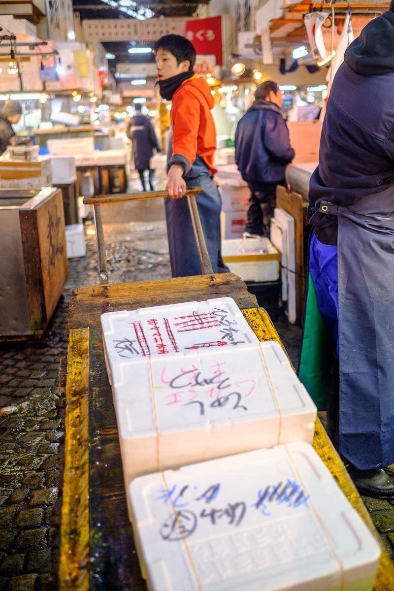 Trong chợ cá lớn nhất thế giới tại Nhật Bản: Mỗi con cá ngừ được bán với giá bằng vài ngôi nhà Nhật Bản - Ảnh 5.