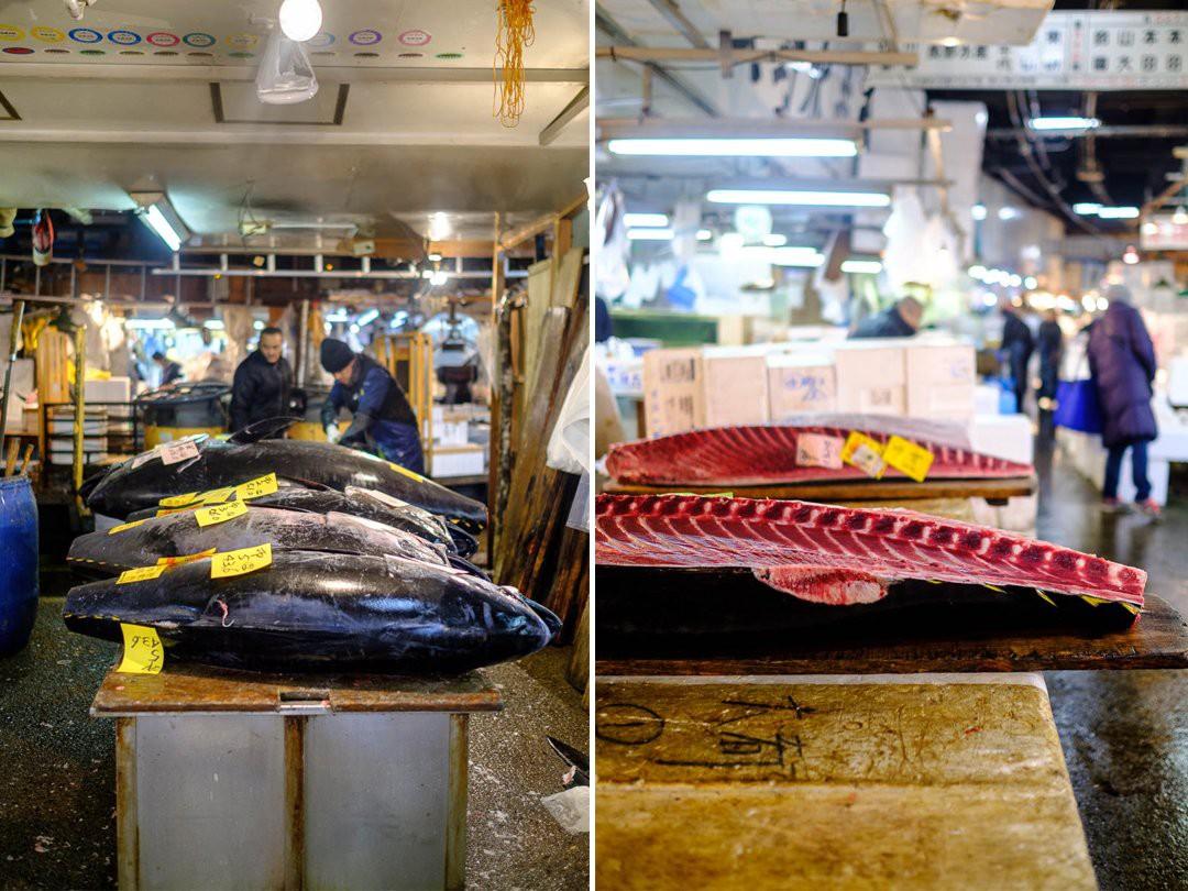 Trong chợ cá lớn nhất thế giới tại Nhật Bản: Mỗi con cá ngừ được bán với giá bằng vài ngôi nhà Nhật Bản - Ảnh 7.