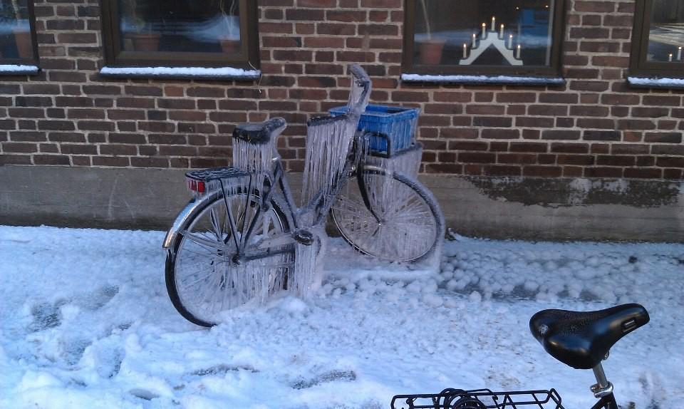 15 điều kỳ cục chỉ có thể xảy ra khi trời bỗng dưng lạnh quá - Ảnh 19.