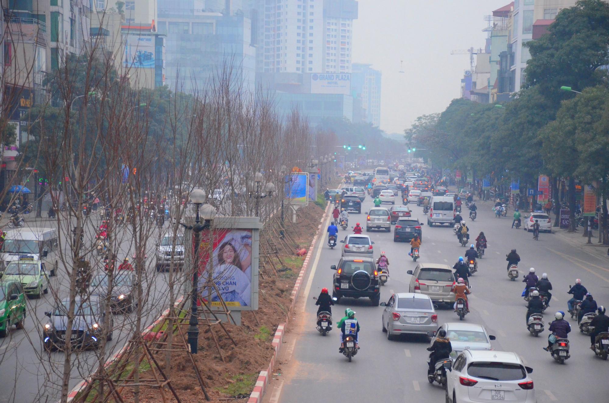 Chùm ảnh: Tận thấy hàng trăm cây phong lá đỏ mới được trồng trên phố Trần Duy Hưng ở Hà Nội - Ảnh 8.