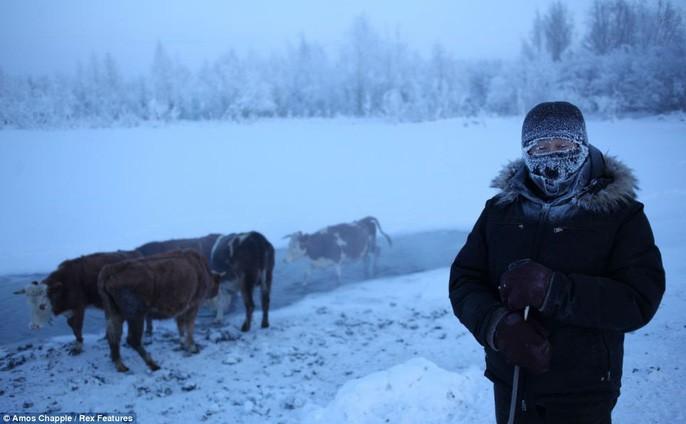 Ngôi làng Cực lạnh từng chịu đựng nhiệt độ -71,2 độ C - Ảnh 2.
