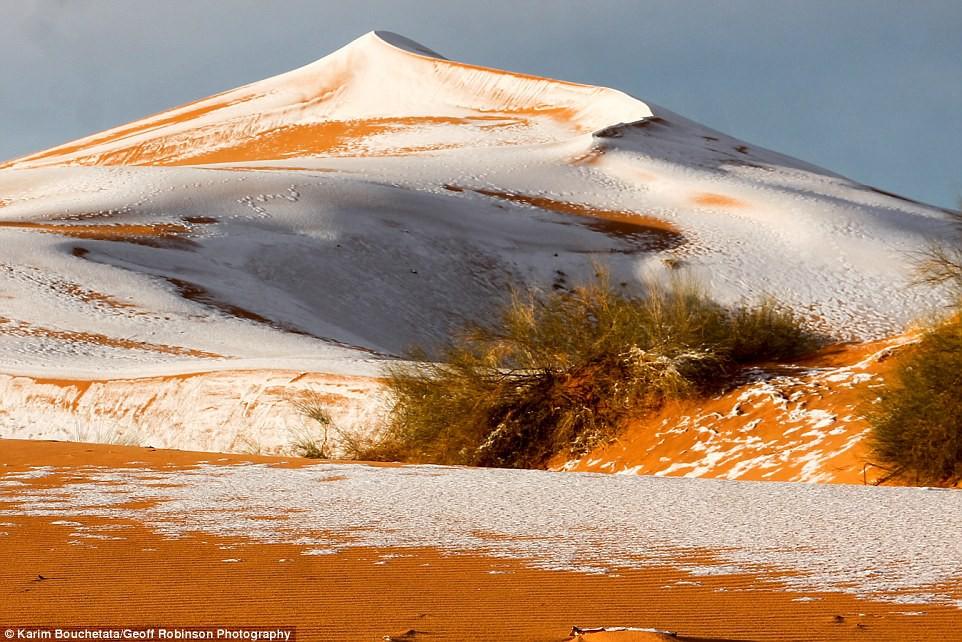 Thế giới lạnh siêu mạnh đến mức sa mạc Sahara nóng bỏng cũng bị tuyết phủ tới 40 cm - Ảnh 4.