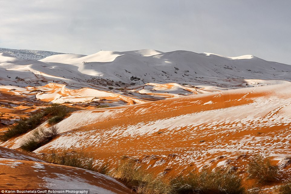 Thế giới lạnh siêu mạnh đến mức sa mạc Sahara nóng bỏng cũng bị tuyết phủ tới 40 cm - Ảnh 5.