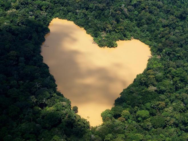 24 bức ảnh cho thấy rừng Amazon từ lá phổi xanh của thế giới đã trở thành chứng tích cho sự tàn phá của con người - Ảnh 1.