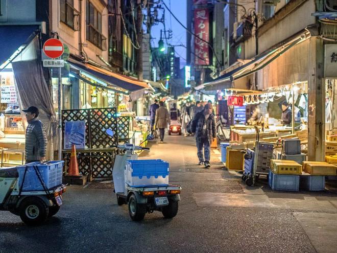 Trong chợ cá lớn nhất thế giới tại Nhật Bản: Mỗi con cá ngừ được bán với giá bằng vài ngôi nhà Nhật Bản - Ảnh 18.