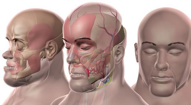 Các bác sĩ Pháp vừa làm nên lịch sử, khi cấy ghép khuôn mặt lần thứ hai cho cùng một người - Ảnh 2.