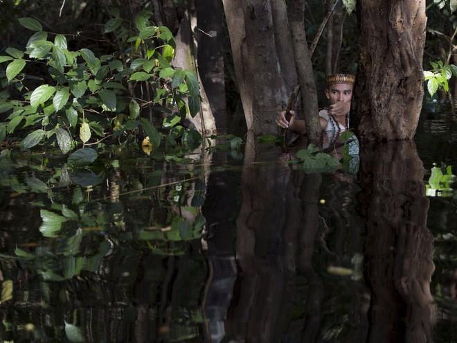 24 bức ảnh cho thấy rừng Amazon từ lá phổi xanh của thế giới đã trở thành chứng tích cho sự tàn phá của con người - Ảnh 11.