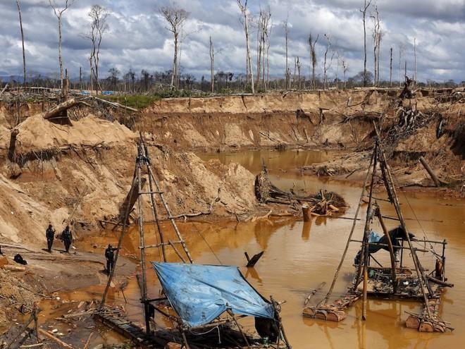 24 bức ảnh cho thấy rừng Amazon từ lá phổi xanh của thế giới đã trở thành chứng tích cho sự tàn phá của con người - Ảnh 19.