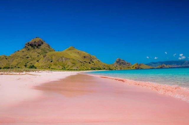 Ngắm nhìn vẻ đẹp thơ mộng của những bãi biển cát hồng đẹp nhất thế giới - Ảnh 5.