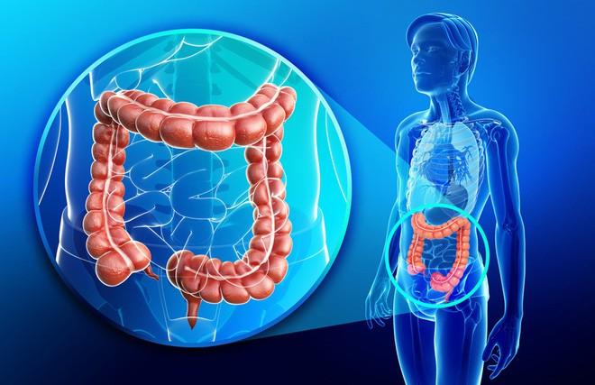 Vi sinh vật trong ruột có thể hack quyền điều khiển bộ gen của bạn, đây là cách chúng làm điều đó - Ảnh 3.