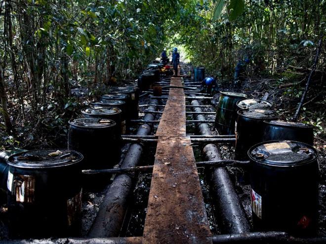24 bức ảnh cho thấy rừng Amazon từ lá phổi xanh của thế giới đã trở thành chứng tích cho sự tàn phá của con người - Ảnh 22.