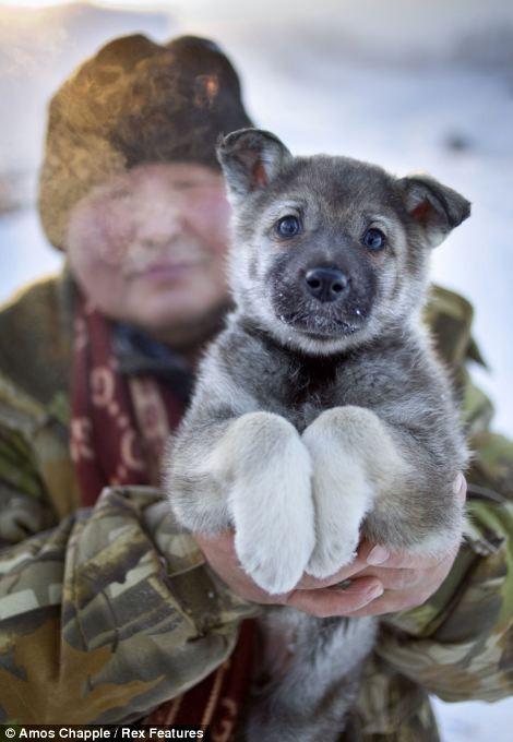 Ngôi làng Cực lạnh từng chịu đựng nhiệt độ -71,2 độ C - Ảnh 6.