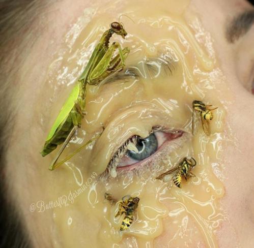 Nhặt nhạnh xác côn trùng, cô gái đã làm nên những tác phẩm make up đỉnh cao - Ảnh 19.