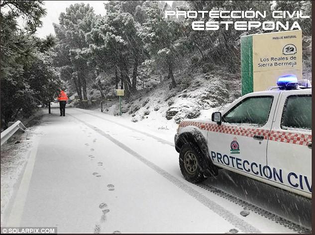 Lạnh đến khó tin: Cả thiên đường nghỉ dưỡng giờ ngập trong tuyết trắng dưới thời tiết khắc nghiệt - Ảnh 5.