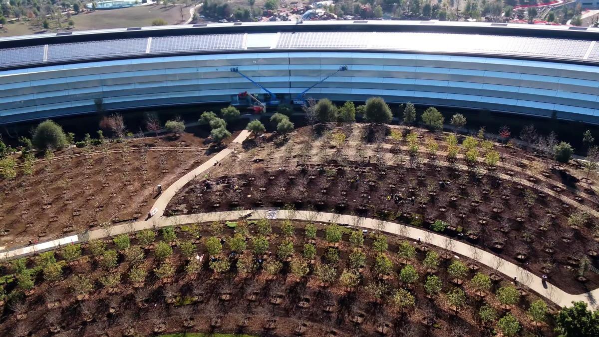 Apple vừa hoàn thành xong trụ sở mới cực hoành tráng, trông như đĩa bay ngoài hành tinh - Ảnh 7.
