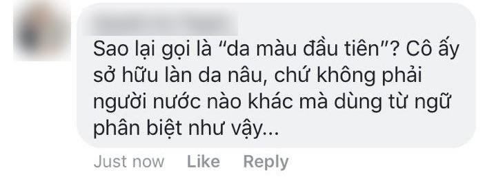 """Fanpage Hoa hậu Hoàn vũ Việt Nam bị chỉ trích khi gọi HHen Niê là """"hoa hậu da màu đầu tiên"""" - Ảnh 2."""