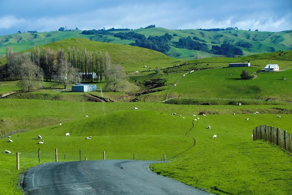 Tại sao những bạn trẻ đam mê điện ảnh lại chọn New Zealand để du học? - Ảnh 1.