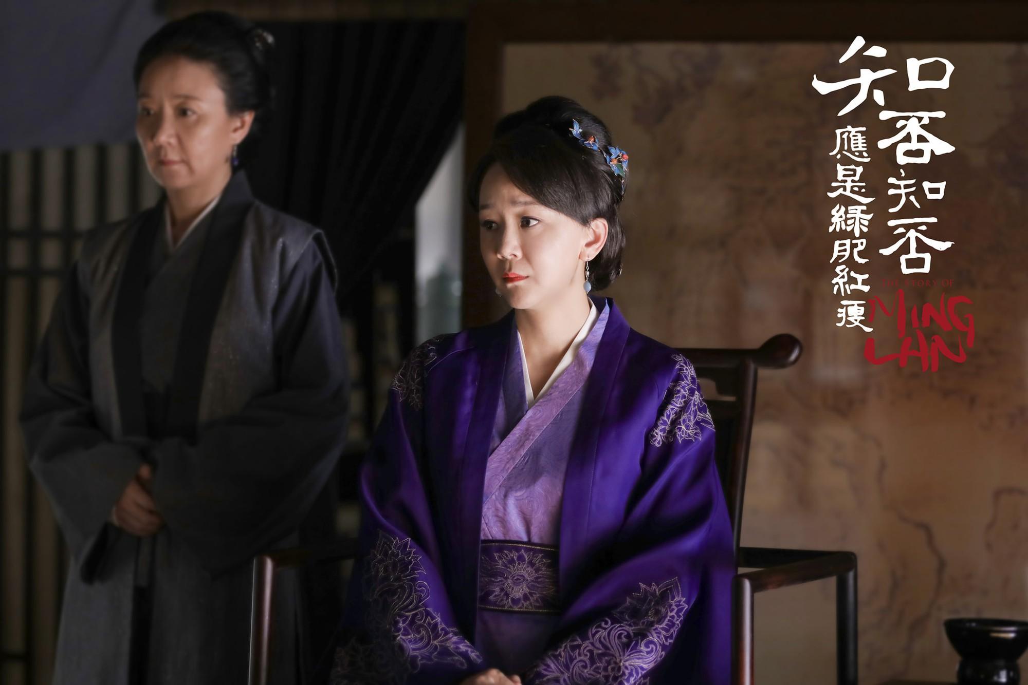 Lộ diện 4 gương mặt phản diện quyết cho Triệu Lệ Dĩnh ăn hành ra bã trong Minh Lan Truyện - Ảnh 5.