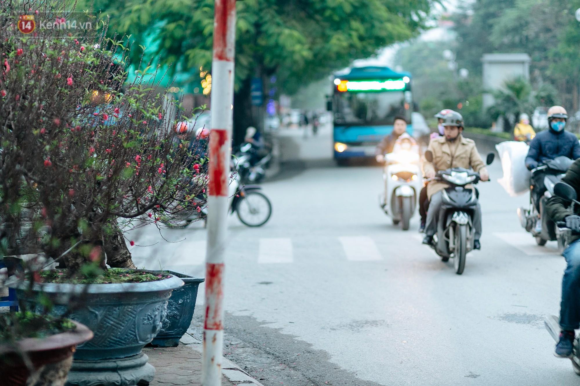 Chùm ảnh: Hoa đào đã nở đỏ rực trên những tuyến phố Hà Nội, Tết đã đến rất gần rồi! - Ảnh 3.