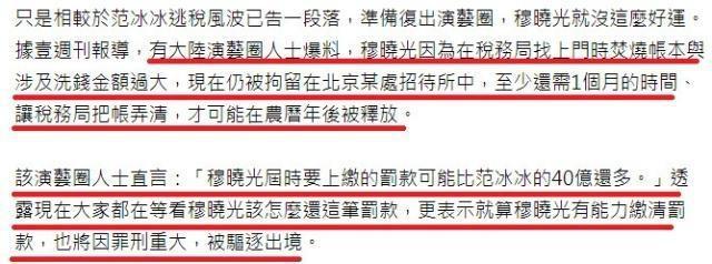 Tiêu huỷ chứng cứ, quản lý của Phạm Băng Băng đối mặt với nguy cơ bị trục xuất khỏi Trung Quốc- Ảnh 5.