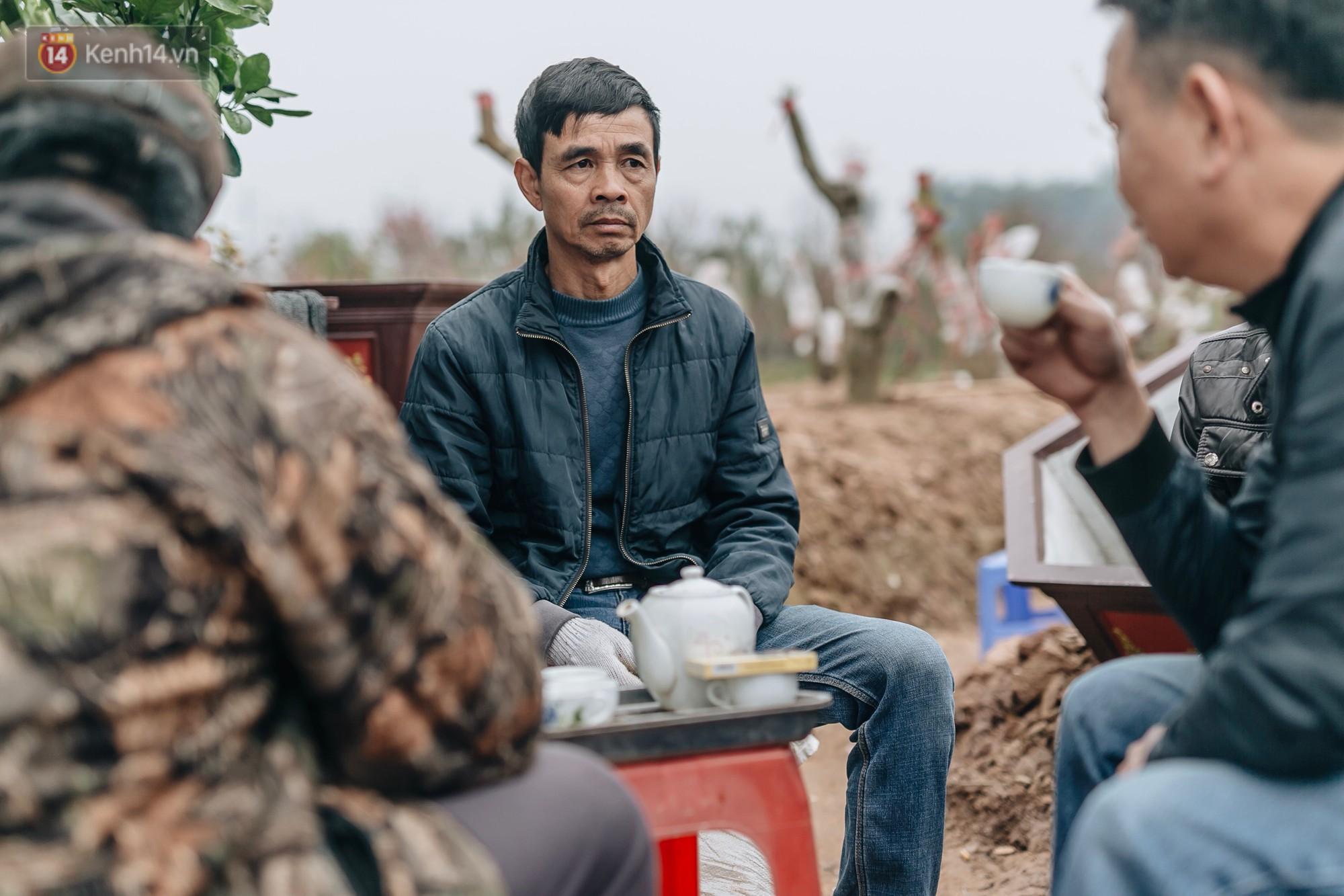 Gần 200 gốc đào của người dân Bắc Ninh bị chặt phá trong đêm: Tết năm nay còn chả có bánh chưng mà ăn - Ảnh 12.