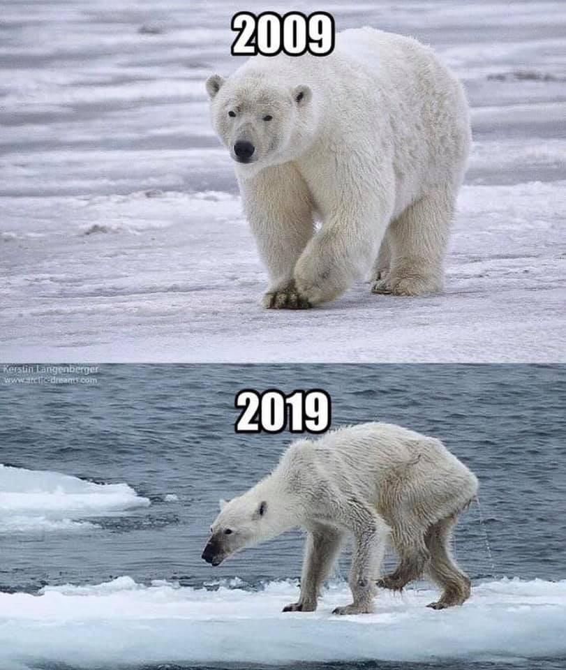 Khi Trái đất cũng theo trend Thử thách 10 năm, cảm xúc chỉ còn 2 chữ: Xót xa - Ảnh 5.