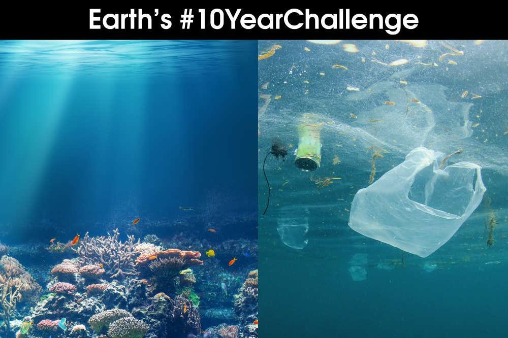 Khi Trái đất cũng theo trend Thử thách 10 năm, cảm xúc chỉ còn 2 chữ: Xót xa - Ảnh 8.