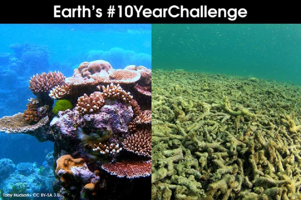 Khi Trái đất cũng theo trend Thử thách 10 năm, cảm xúc chỉ còn 2 chữ: Xót xa - Ảnh 6.