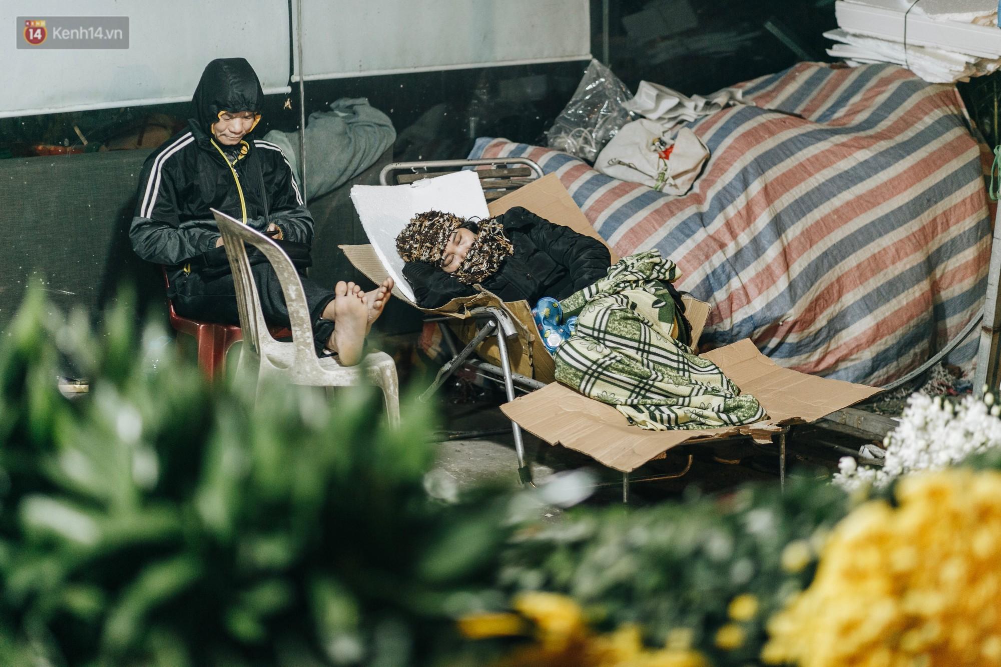 Hà Nội: Người dân dựng lều, trùm chăn canh đào quất cả đêm - Ảnh 3