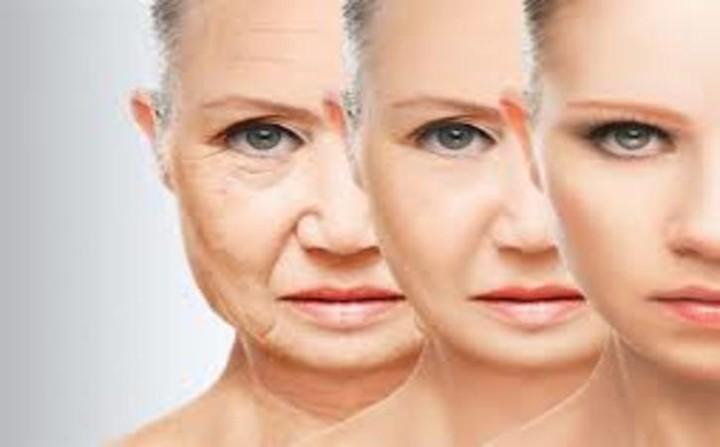 Khám phá tác dụng ngăn ngừa ung thư và chống lão hóa của atiso - Ảnh 2.