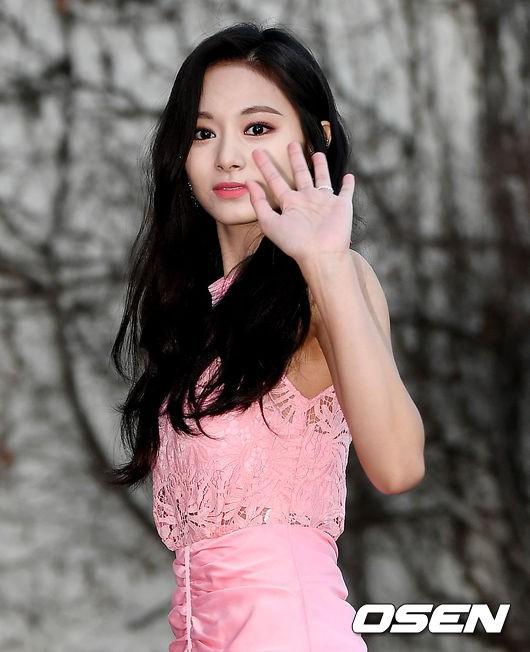 Hơn 80 sao Hàn đổ bộ thảm đỏ Gaon 2019: Tzuyu xuất sắc, nữ thần lai và mỹ nhân TWICE gây chú ý vì vòng 1 đốt mắt - Ảnh 3.