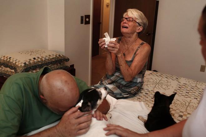 Chùm ảnh: Những khoảnh khắc cuối cùng của chủ nhân và chó mèo cưng trước khi nói lời vĩnh biệt - Ảnh 4.