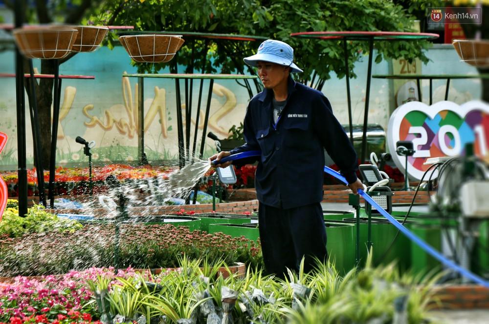 Cận cảnh đường hoa Nguyễn Huệ ở Sài Gòn trước giờ khai mạc đón Tết Kỷ Hợi 2019 - Ảnh 11.