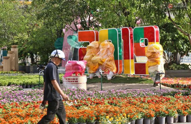 Cận cảnh đường hoa Nguyễn Huệ ở Sài Gòn trước giờ khai mạc đón Tết Kỷ Hợi 2019 - Ảnh 3.
