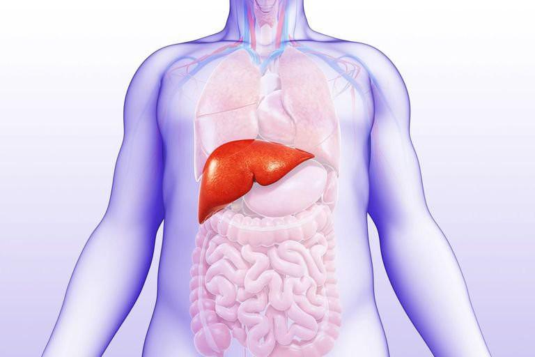 Người mắc bệnh mỡ máu cao thường có nguy cơ gặp phải những vấn đề sức khỏe gì? - Ảnh 1.