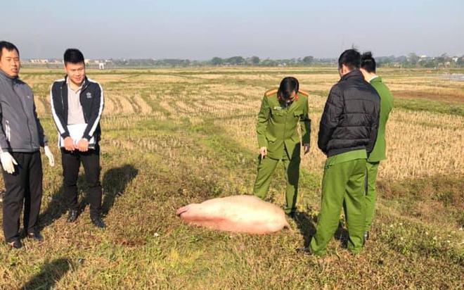Phú Thọ: Người đàn ông nghi trộm lợn để lại xe máy và tang vật rồi bỏ chạy khi bị công an truy đuổi