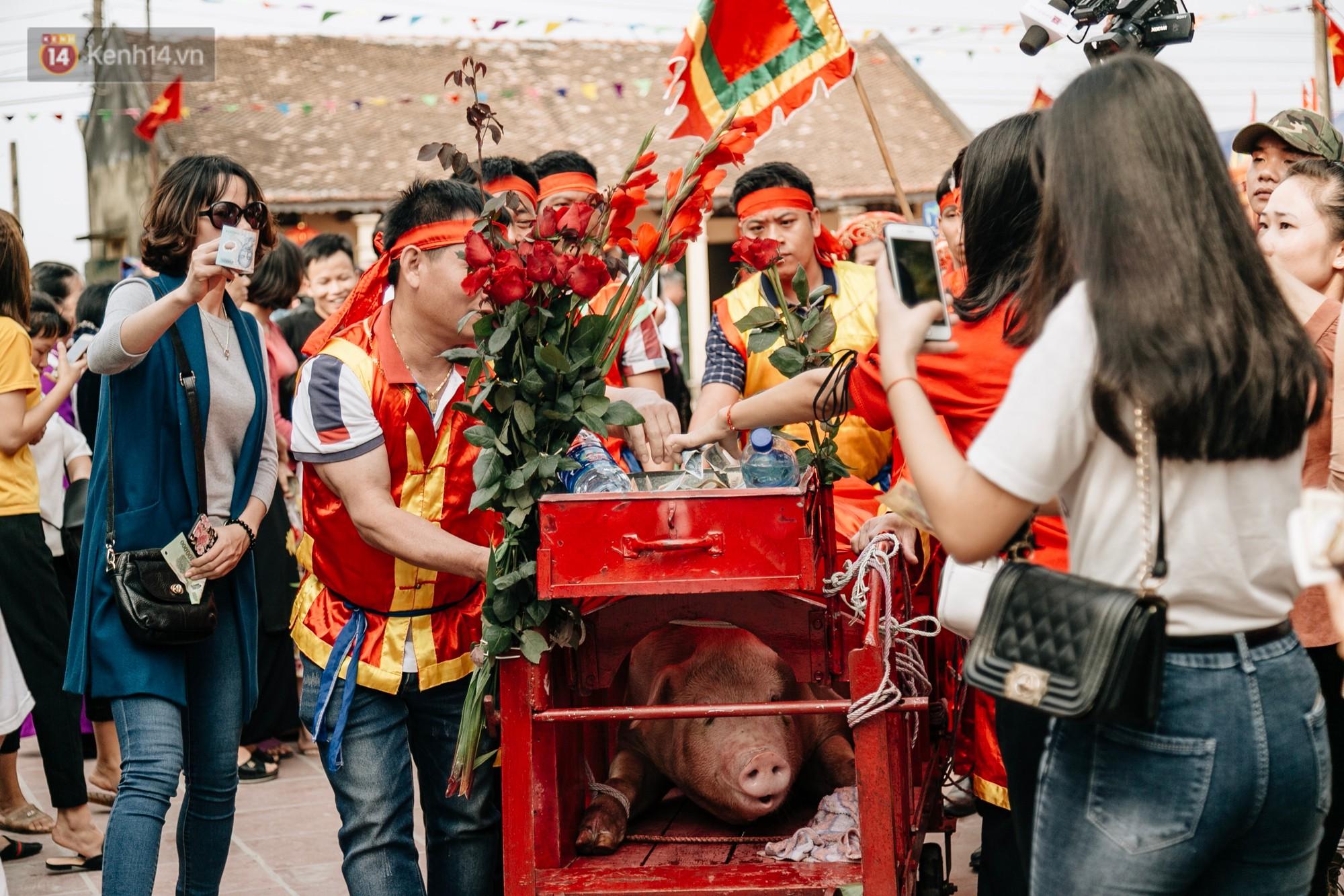 Ảnh, clip: Hàng trăm người dân tập trung chứng kiến nghi lễ chém lợn kín ngày đầu năm, máu 2 ông Ỉn chảy lênh láng - Ảnh 8.