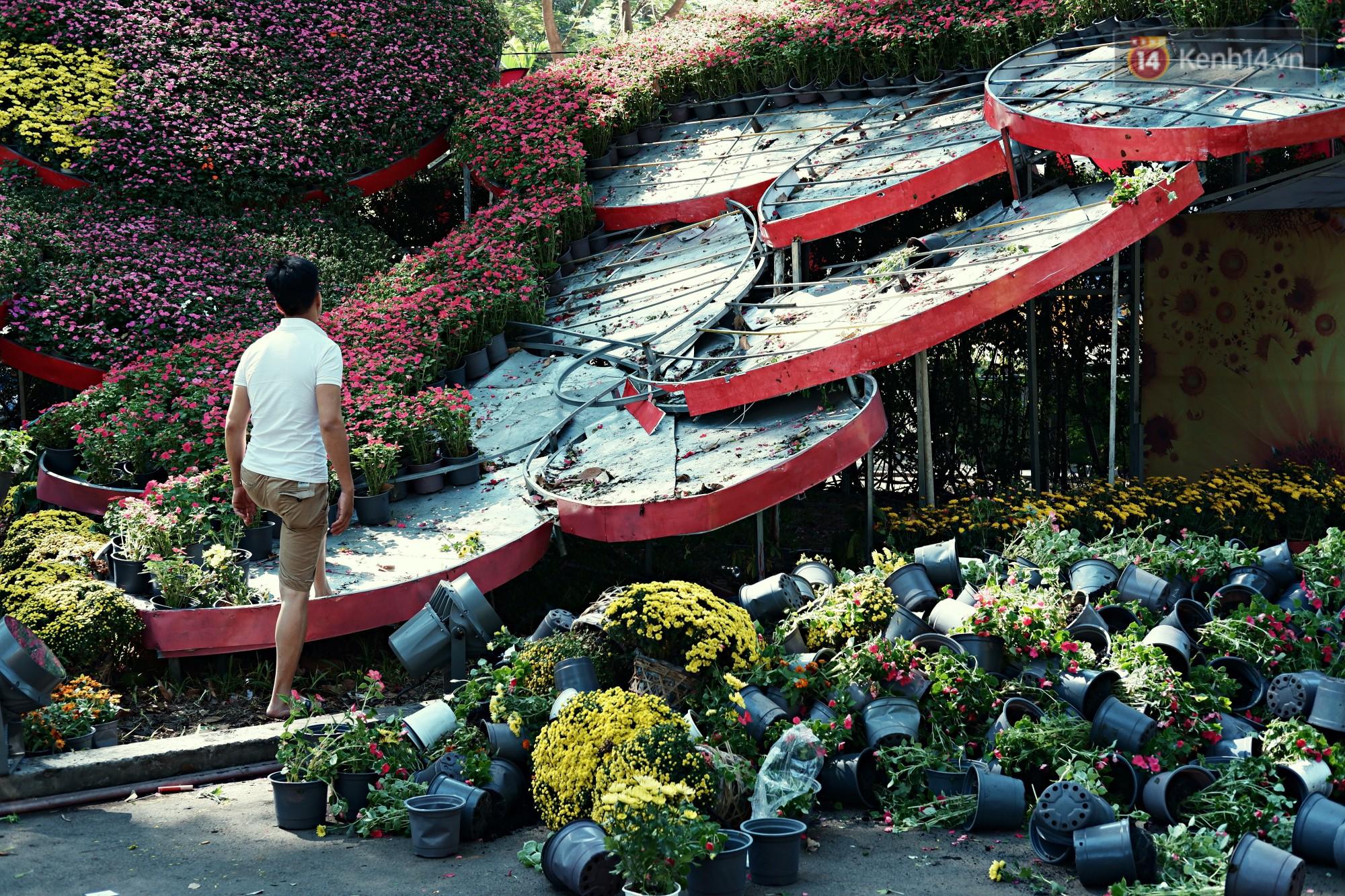 Hội hoa Xuân kết thúc, người dân Sài Gòn hào hứng xin hoa miễn phí về chưng cho đỡ uổng phí - Ảnh 2.