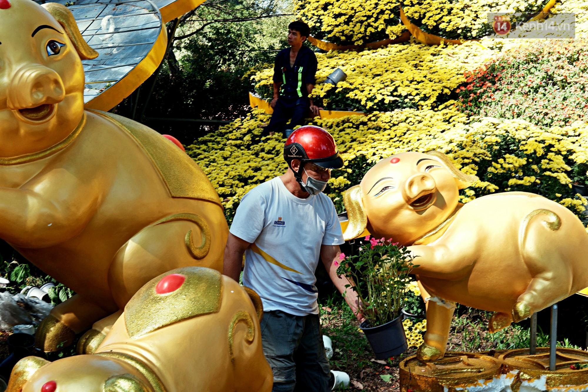 Hội hoa Xuân kết thúc, người dân Sài Gòn hào hứng xin hoa miễn phí về chưng cho đỡ uổng phí - Ảnh 3.
