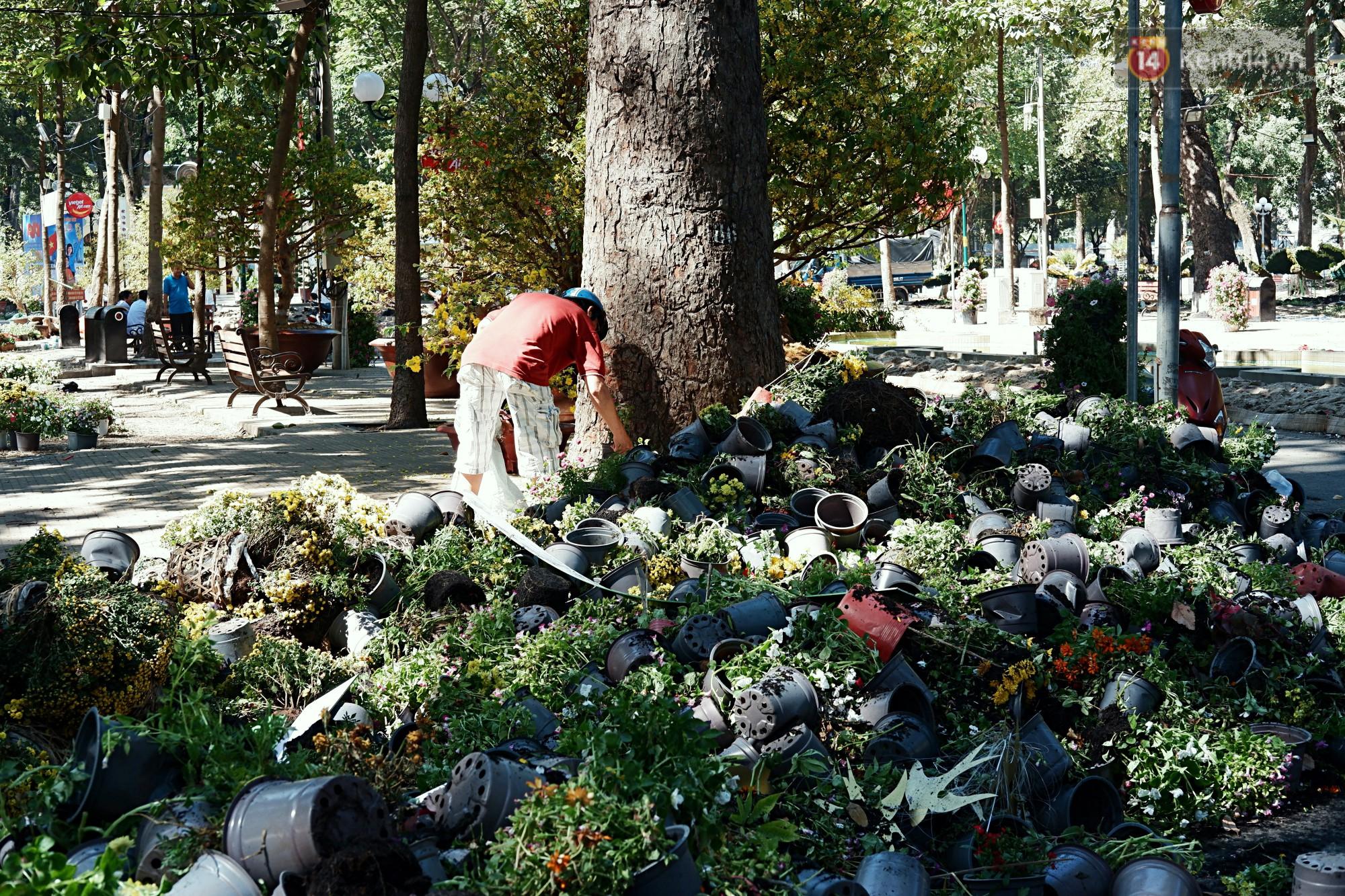 Hội hoa Xuân kết thúc, người dân Sài Gòn hào hứng xin hoa miễn phí về chưng cho đỡ uổng phí - Ảnh 6.