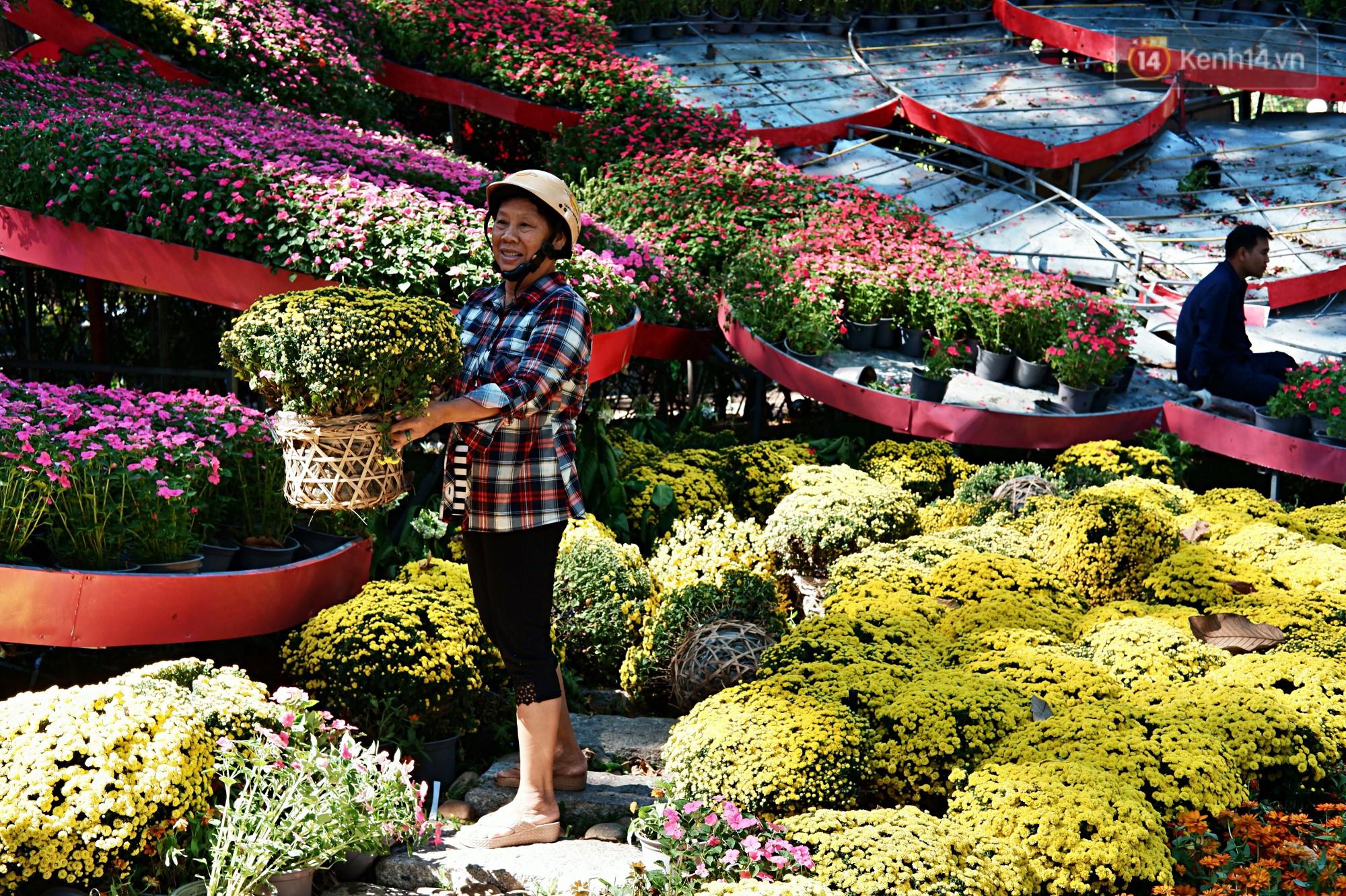 Hội hoa Xuân kết thúc, người dân Sài Gòn hào hứng xin hoa miễn phí về chưng cho đỡ uổng phí - Ảnh 10.