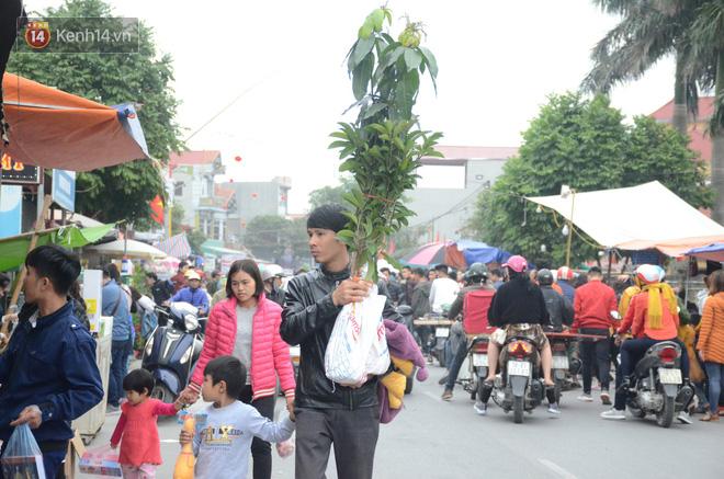 Hàng vạn người đổ về chợ Viềng khiến đường tắc hàng km, ai cũng lựa mua chậu hoa, cây cảnh lấy may đầu năm - Ảnh 1.