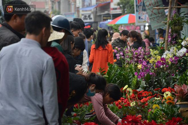 Hàng vạn người đổ về chợ Viềng khiến đường tắc hàng km, ai cũng lựa mua chậu hoa, cây cảnh lấy may đầu năm - Ảnh 2.