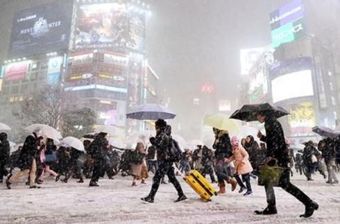 Nhật Bản chìm trong giá lạnh khắc nghiệt, 100 chuyến bay bị hủy - Ảnh 1.
